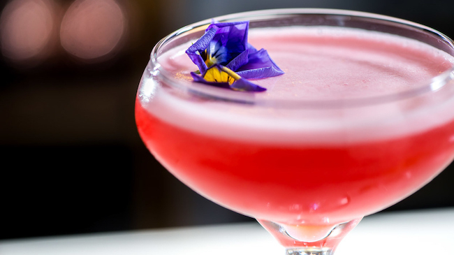 Clover club at The Arkle Manor